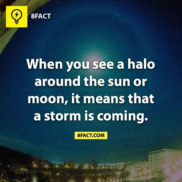 Halo around the sun                                                                                                                                                                                 More