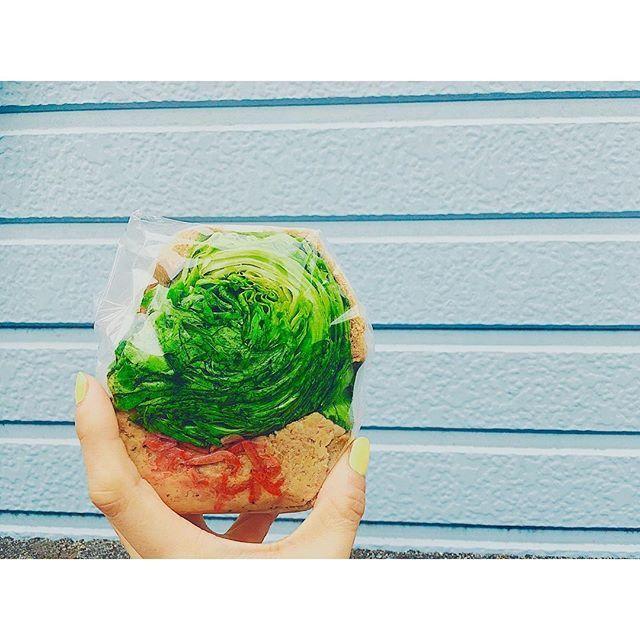 ・ *ピーナッツバター&ツナベジタブル* ・ シャキシャキ野菜とピーナッツバターが練りこまれたツナサラダが濃厚で美味しい◎ ただもう少しであごが外れる!笑 他のも食べてみたいな〜♡ ・ ・  #ポタスタ #代々木上原 #サンドイッチ #ベジタブル #野菜 #野菜サンド #野菜好き #お昼ごはん #ランチ #ランチタイム #ライフスタイル #フォトジェニック #写真部 #日常の風景 #セルフネイル #イエローネイル #ファッション #モデル #蒼木まや