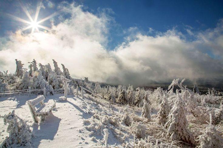 El sol brilla sobre un paisaje nevado en el Fichtelberg cerca de Oberwiesenthal, Sajonia (Alemania). BERND MÄRZ (AFP