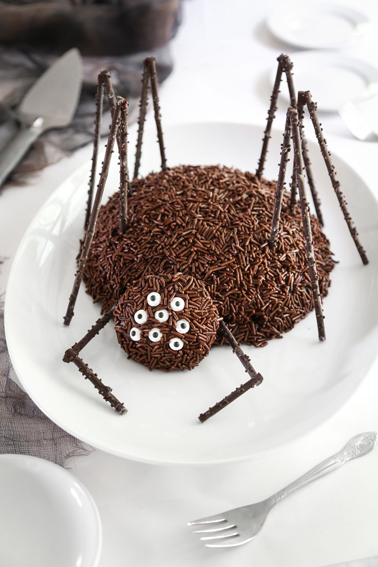 Chocolate Spider Cake Recipe  - super cute Halloween dessert recipe for a Halloween party!