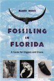 Venice Fossil Shark Teeth and other Fossils: Finding Fossils including Megalodon at Venice Beach, Florida