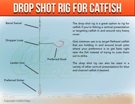 The drop shot rig is an excellent catfish rig for targeting catfish in and around heavy cover or in vertical presentations.