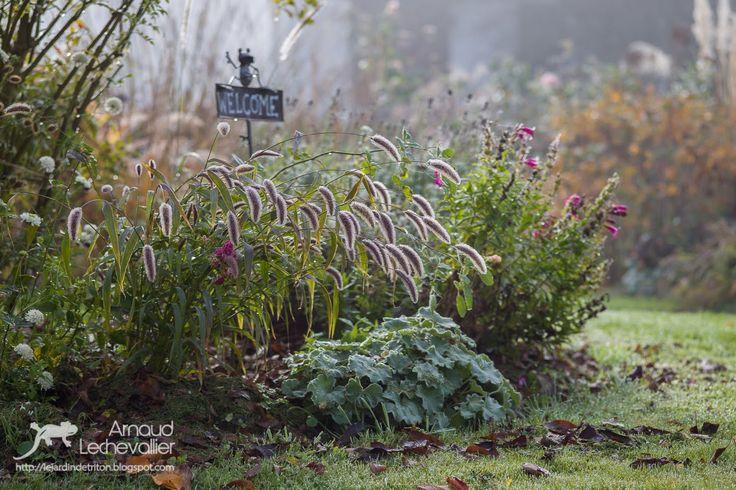 giardino Triton
