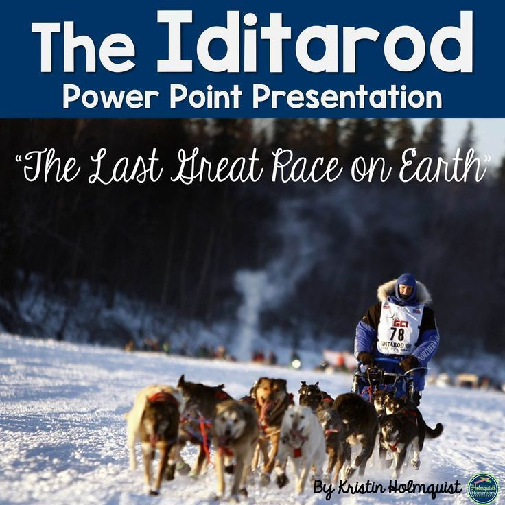 Sled Dog Race Alaska Power Point Racing Dog Training Courses