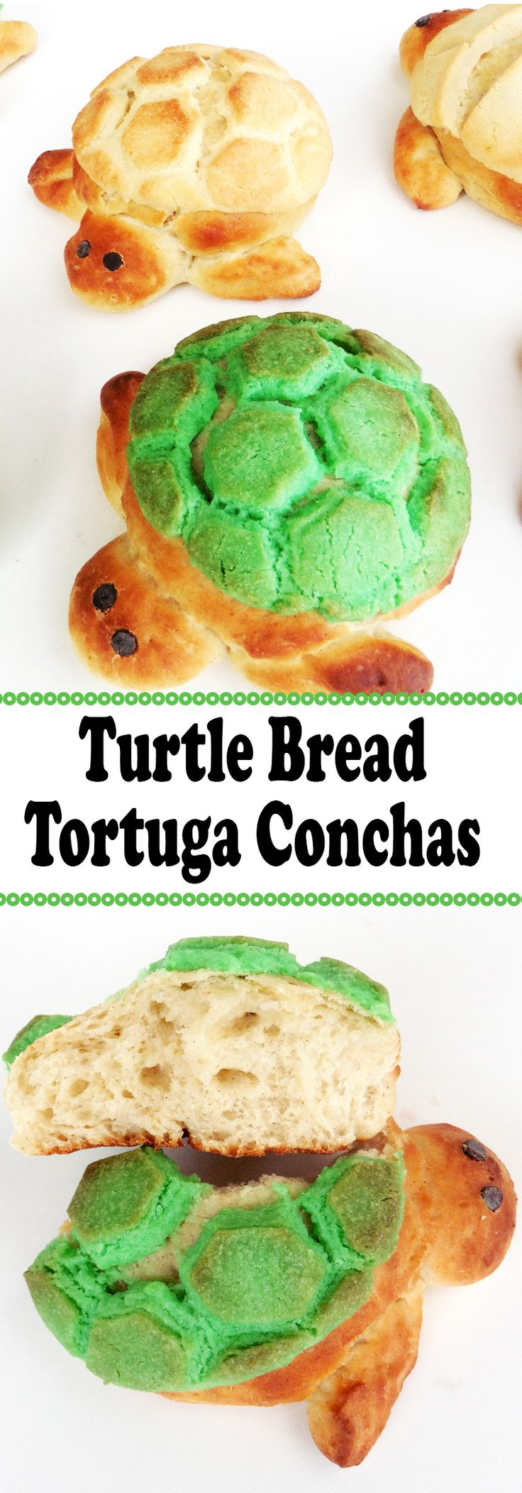 f you've ever set foot in a panaderia (Mexican Bakery) you've surely seen the traditional concha among the wide selection of pastries and sweet treats. The concha is probably the most iconic of all the pan dulces.