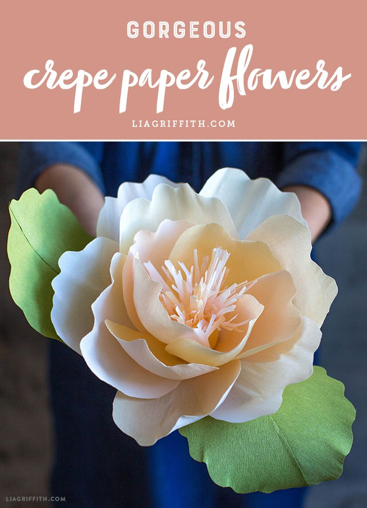 Browse our favorite crepe paper flower tutorials and patterns! www.LiaGriffith.com #crepepaperflowers #crepepaperrevival #crepepaper #paperflowertutorial #paperflowerpattern #howto #flowertutorial