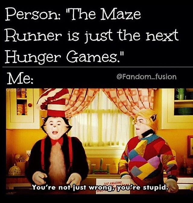 Yeah Maze Runner was written BEFORE Hunger Games