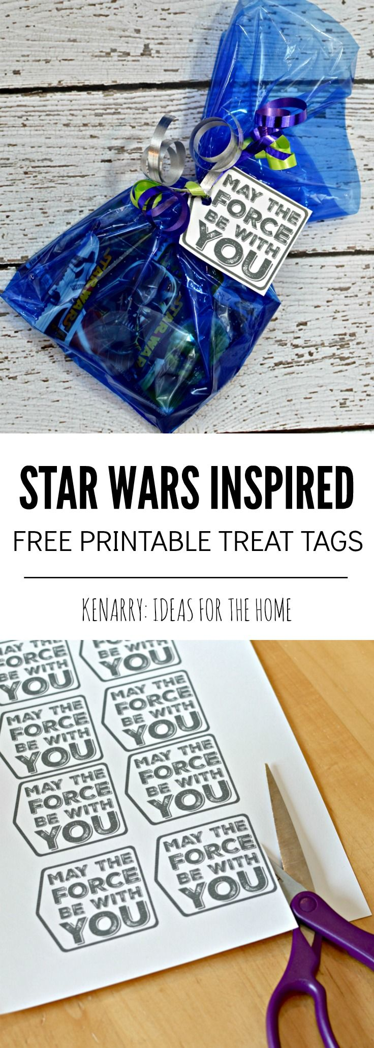 "What a cute and easy idea for Star Wars party favors! Just fill a treat bag with Star Wars crackers, stickers, fruit snacks or trinkets then attach the free printable ""May the Force Be With You"" tags. My son would love to give these as a birthday treat or valentines at school!"