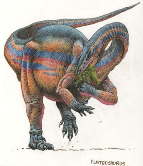 Triassic Animals List 17 Best images about T...