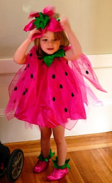 strawberry, with netting. for elle as strawberry shortcake?