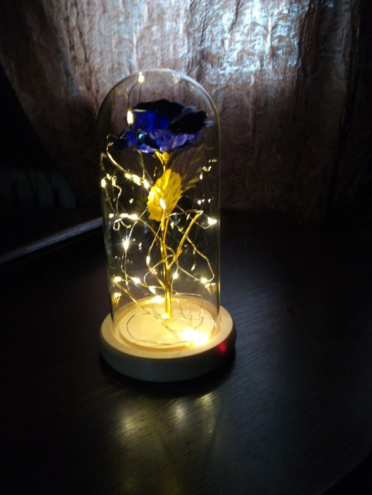 Enchanted led rose light zevymo rose lights