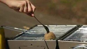 Wussten Sie, dass man mit einer Kartoffel den Grill imprägnieren kann? (Screenshot: Bit Projects)