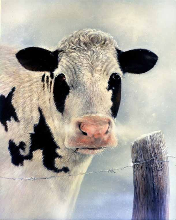 Cow painting by Doug Lehnhardt