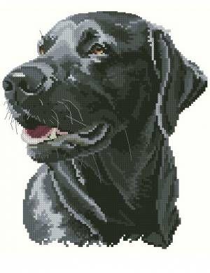 Лабрадор Честер - Собаки - Животные - Схемы в XSD - Кладовочка схем - вышивка…
