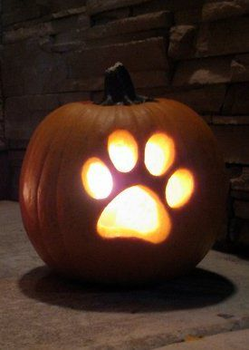 paw print pumpkin via claws and make more wolflike for a spooky halloween pumpkin