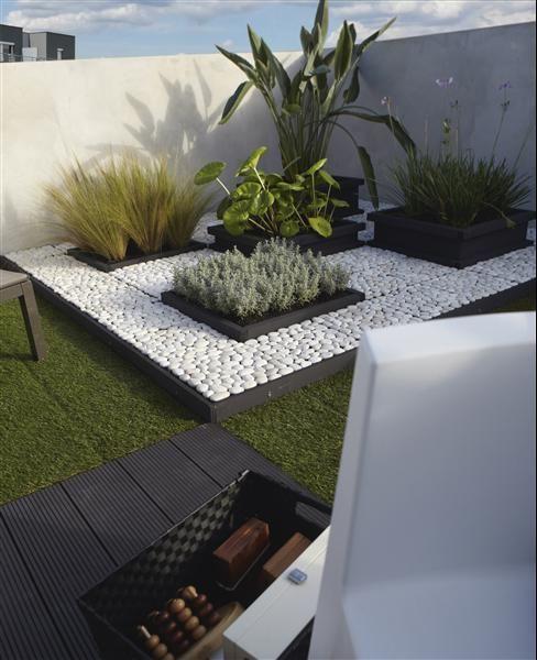.galet blanc et carré de plantes