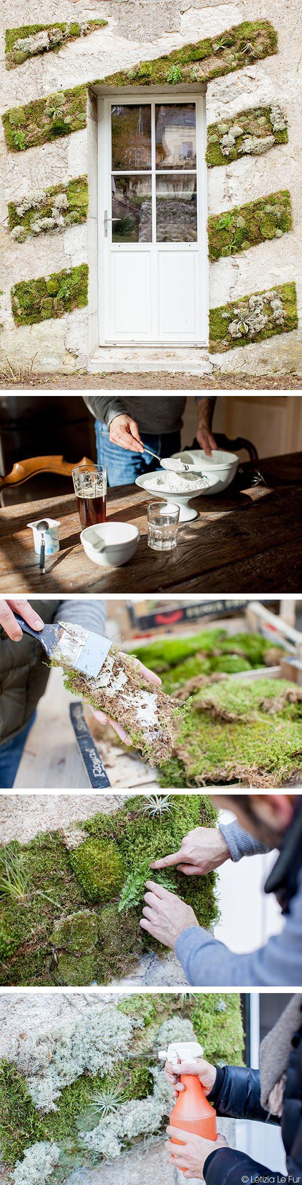 Les fournitures  : Mousse des bois sous formede plaque et de boule : 3 cagettes Tillandsia et lichen gris  La préparation de la colle (pour environ 1m2): 1,7kg de farine, 5 bières de 33cl,  600ml d'eau,  2 yaourts,  150g de sucre en poudre  Le matériel : Une casserole usagée, une spatule  Préparation :  Dans la casserole, sur feu doux, mélangez, dans l'ordre, la farine, les bières, l'eau, les yaourts et le sucre. Continuez de remuer la préparation jusqu'à obtenir un mélange homogène…