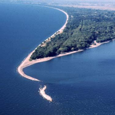 Point Pelee, Ontario, Canada- this is the Southern most point of Canada.  It was so cool to walk out to the very tip. Also home to the Monarch Migration!