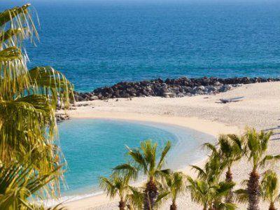 Mare più ricco del mondo - La Bassa California, anche nota come la Baja California, è uno stato messicano, situato all'estremo nord-ovest del paese, nella parte settentrionale della penisola omonima...