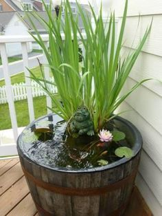 Barrel pond - A nice and low maintenance touch to a porch