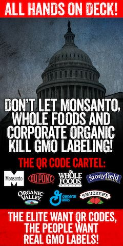 Advocates: Organic Food Companies Worked with Monsanto on Bogus GMO-Labeling…