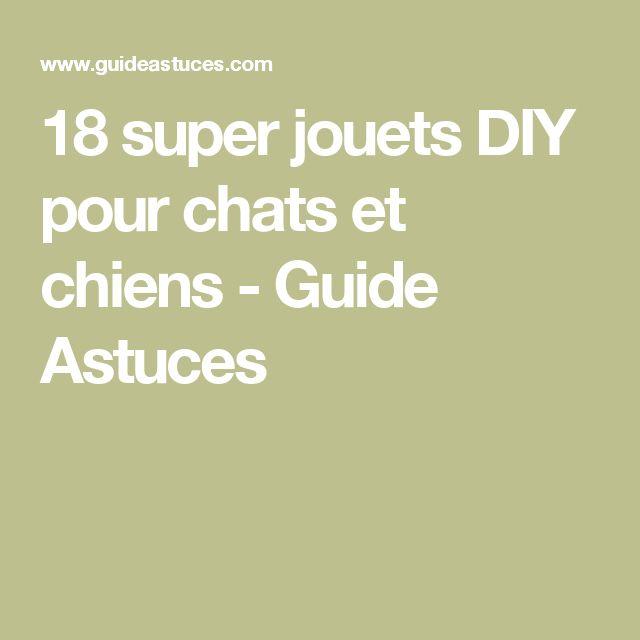 18 super jouets DIY pour chats et chiens - Guide Astuces