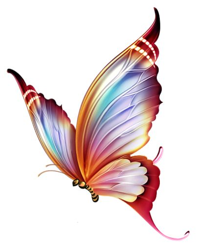 25 Best Ideas About Colorful Butterfly Tattoo On