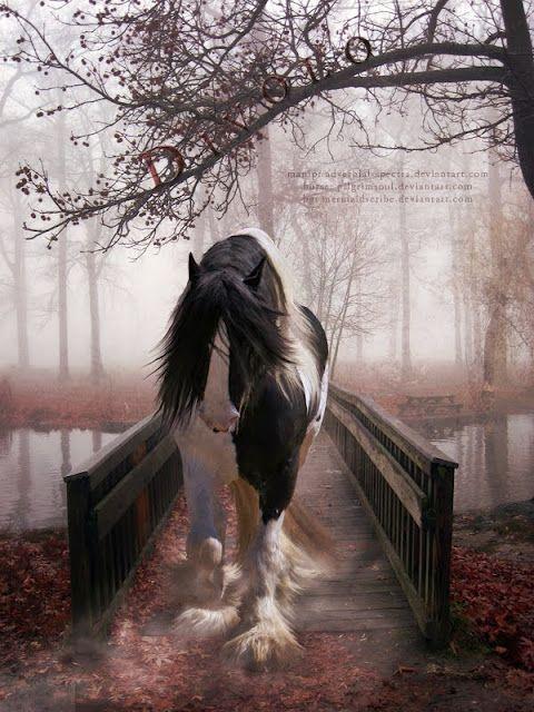 Beautiful horse, beautiful morning....
