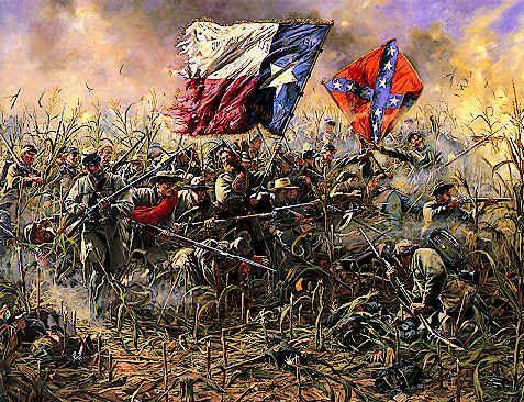 Confederates in the cornfield at Antietam. Hood's 1st Volunteer Texas Brigade, whoop whoop!