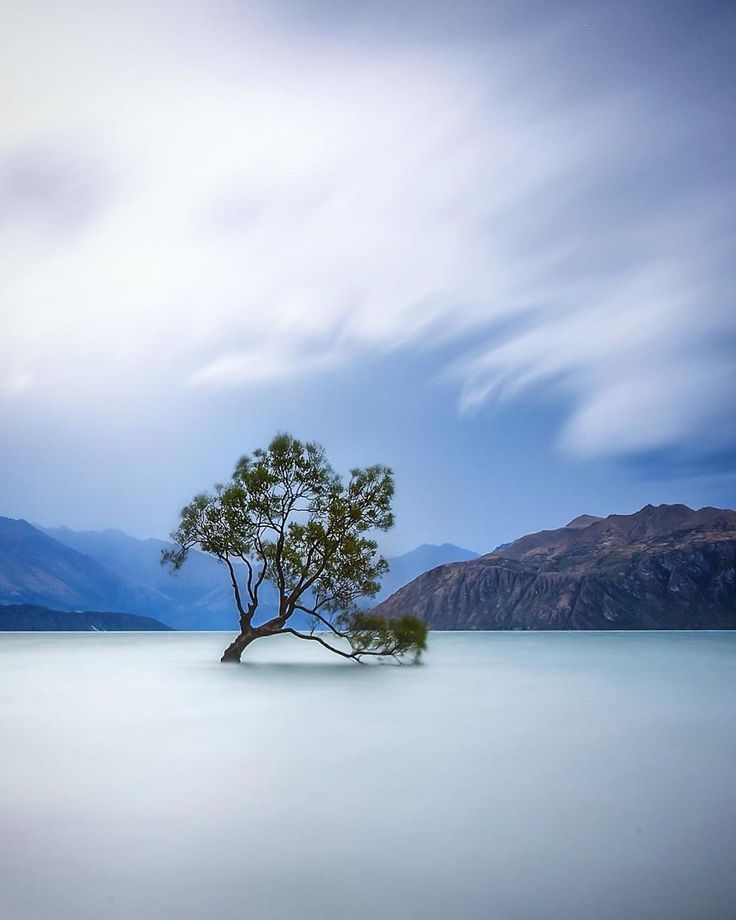 Best New Zealand Scenery Images On Pinterest Caption Bill - Stunning landscape photography of new zealand south island rach stewart