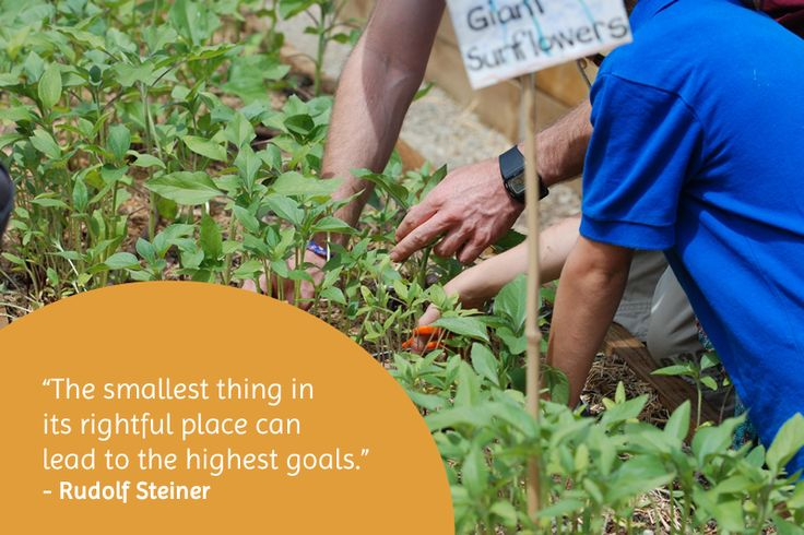 The smallest thing in its rightful place can lead to the highest goals.