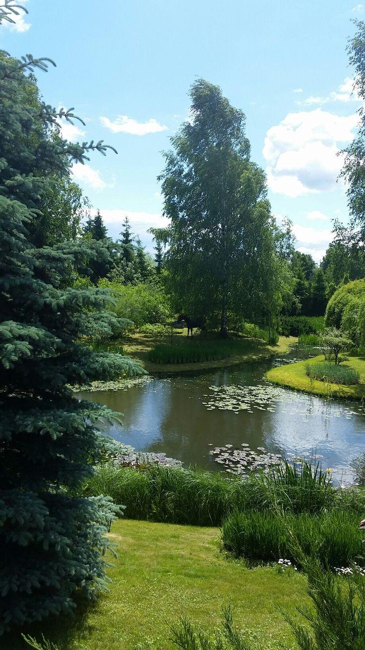 Водные сады Александра Марченко.