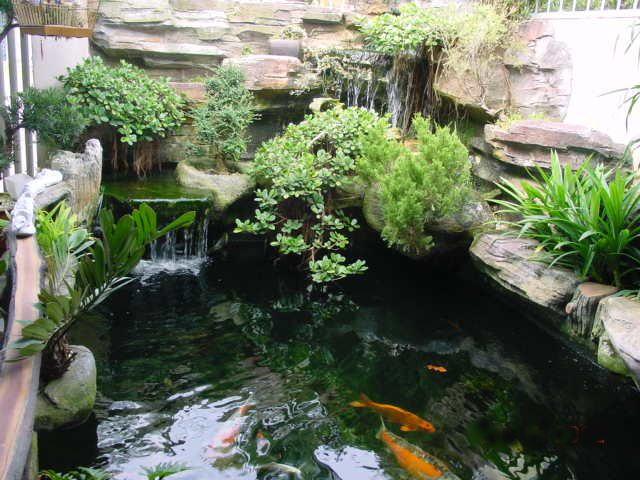 25 best ideas about pond construction on pinterest koi for Best koi pond design