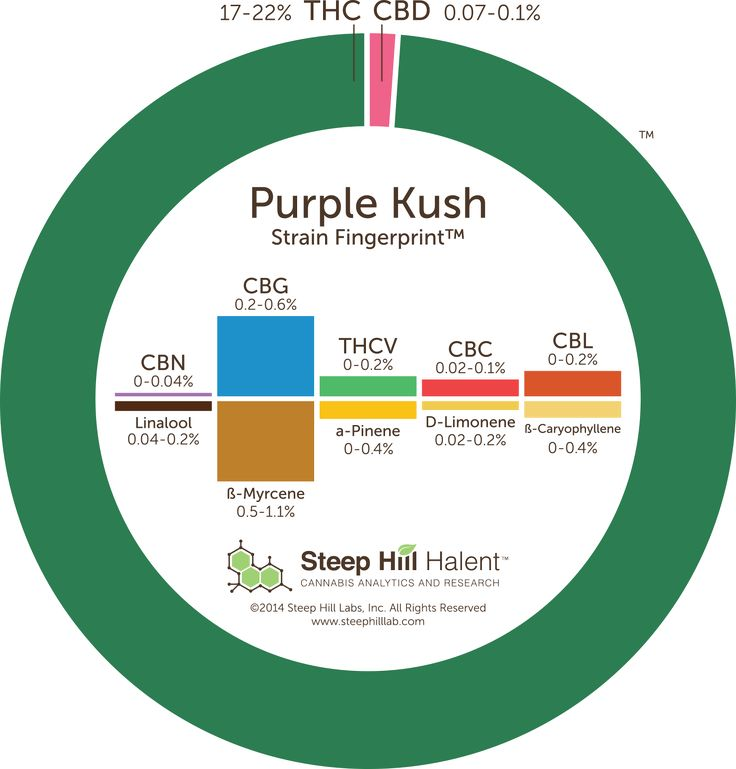 Purple Kush from Oakland, California is an all-indica cross between Hindu Kush and Purple Afghani.