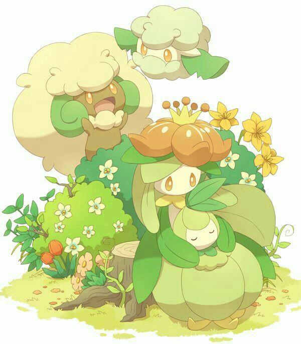 Tipo planta