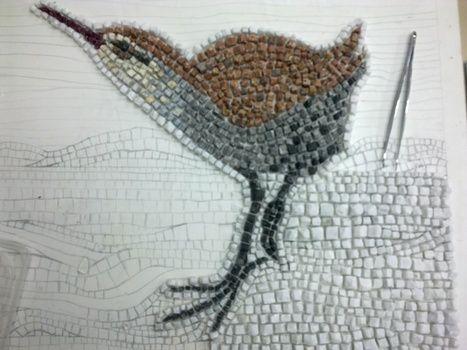 Fotos del pájaro (rascón europeo) en mosaico romano.   opus vermiculatum   Scoop.it