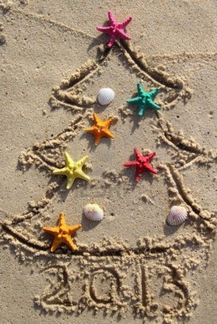 Christmas beach ornaments - Funny Beach Christmas Tree Decorated With The Sea Stars And Shells Stock Photo