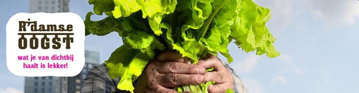 Rotterdamse Oogst wil de regionale voedselketen versterken door het organiseren van evenementen en marktplaatsen