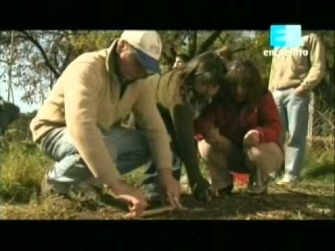 Curso de huerta Orgánica - 3 (La siembra 1ra parte) 2 - YouTube