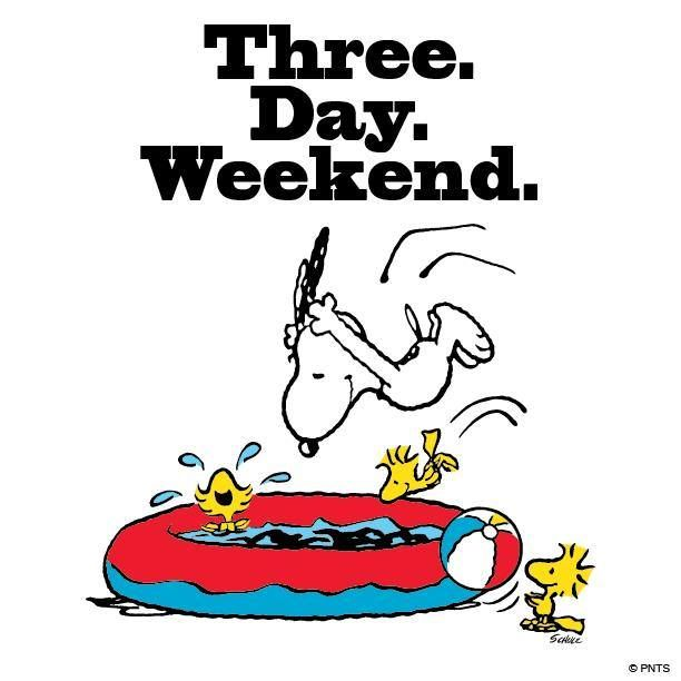 All Long weekend funny cartoon quote think