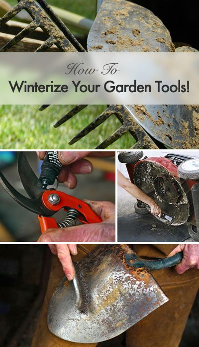 Garden Tips! • Winterize Your Garden Tools!