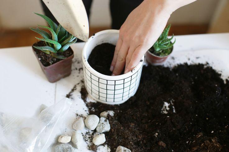 FLOWERPOTS SMALL | GRILLE #minimalism #simple #flowerpots #grille #plants http://forrestdesign.pl/flowerpots-small-grille-prod214977.htm