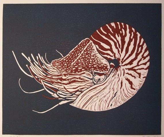 Linocut nautilus, love this!