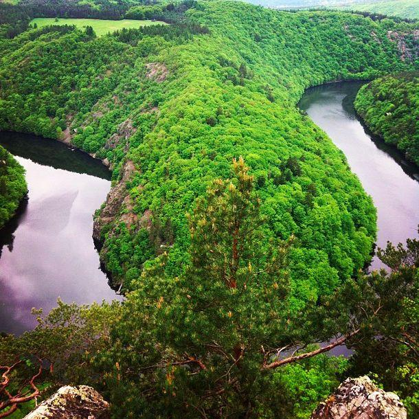 Svatojánské proudy #czech#nature #wildlife  #river#forest #zvejka