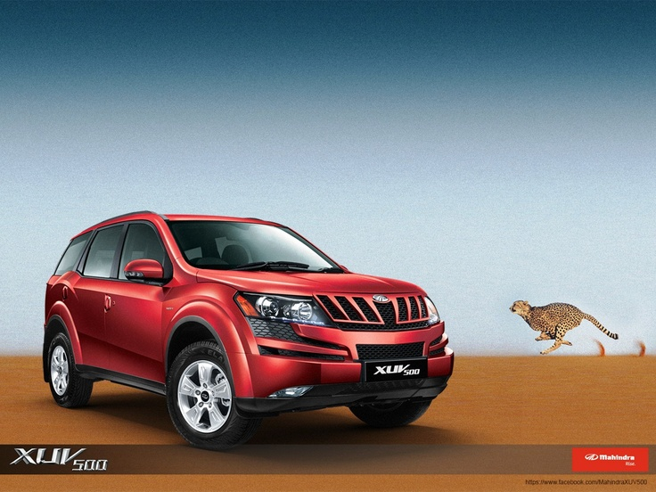 XUV550 with cheetah