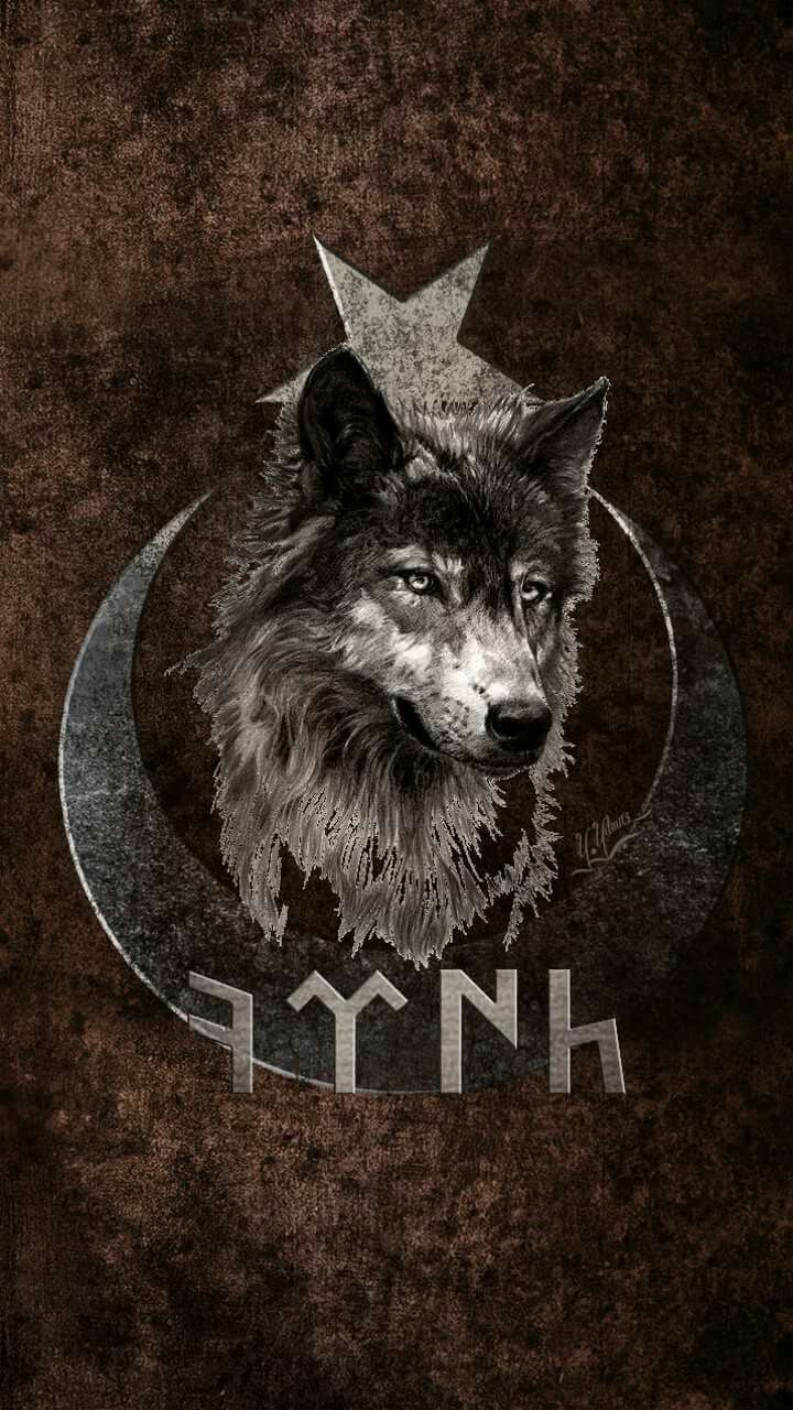 The Wolf is the Star ⭐ of itz own Story.⭐