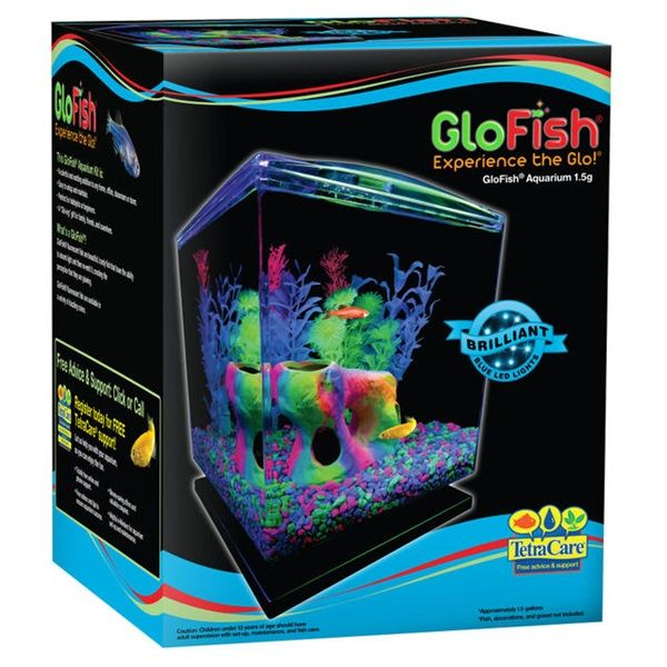 70 best images about glofish on pinterest glow neon and. Black Bedroom Furniture Sets. Home Design Ideas