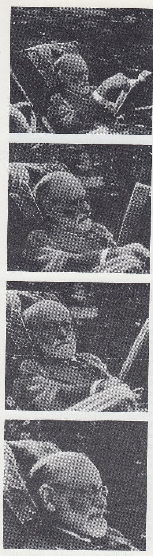 best ideas about sigmund freud books sigmund sigmund freud reading