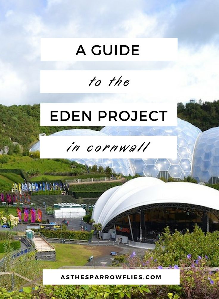 The Eden Project | Visiting Cornwall | The UK | Family Days Out | Travel Tips #traveltips #cornwall via @SamRSparrow