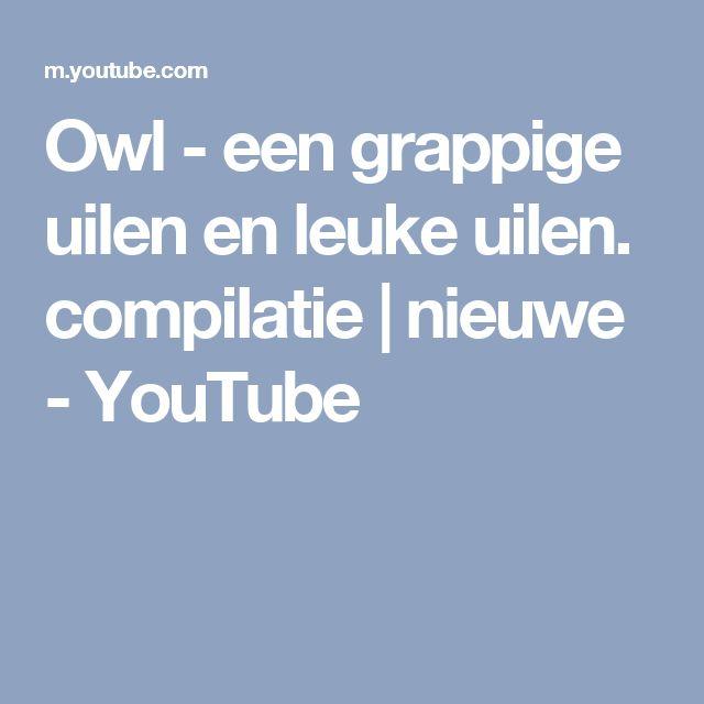 Owl - een grappige uilen en leuke uilen. compilatie   nieuwe - YouTube